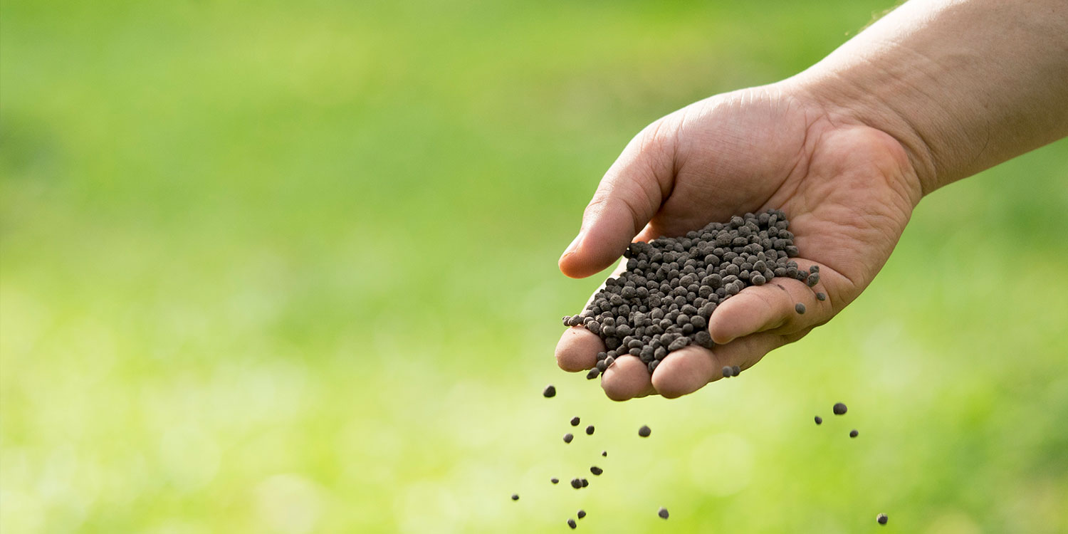 hand sowing fertilizer