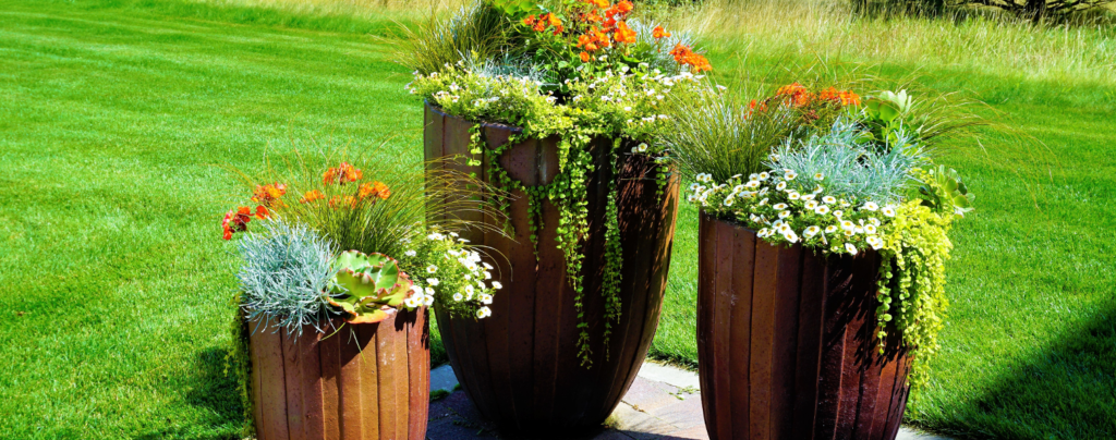 6-container-garden-ideas-for-landscaping-tall-containers