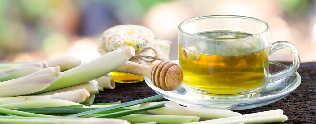 florida-tea-garden-fresh-lemongrass-tea-with-honey