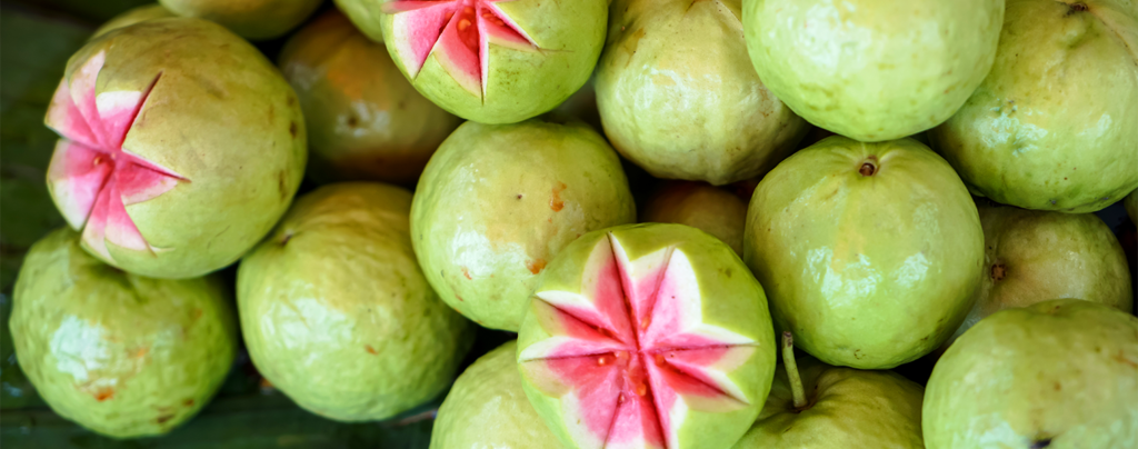 5-tropical-fruits-south-florida-guava