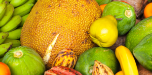 5-tropical-fruits-south-florida-various-colorful-tropical-fruits-header