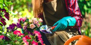 living-color-summer-gardening-header-flowers