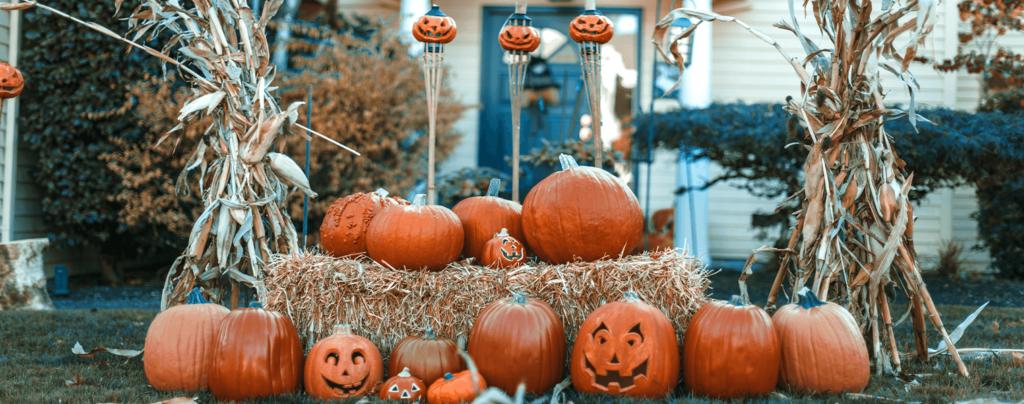 living-color-fall-decor-pumpkins