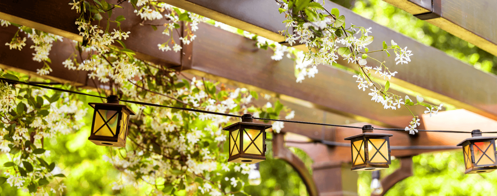 living-color-2021-garden-landscape-design-trends-vines-pergola-lanterns