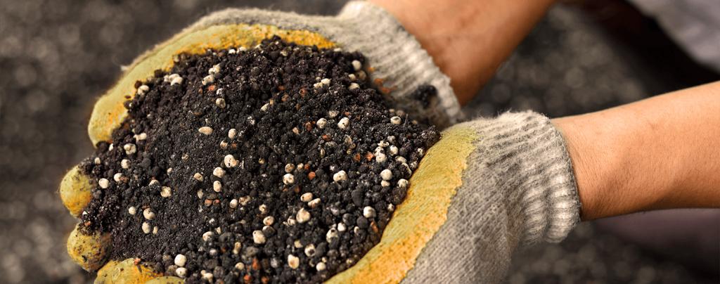 living color best fertilizers tropical fruits flowers palms granular fertilizer in soil