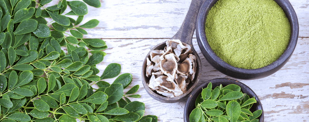 living color garden center edible tropical plants moringa leaves dried powder