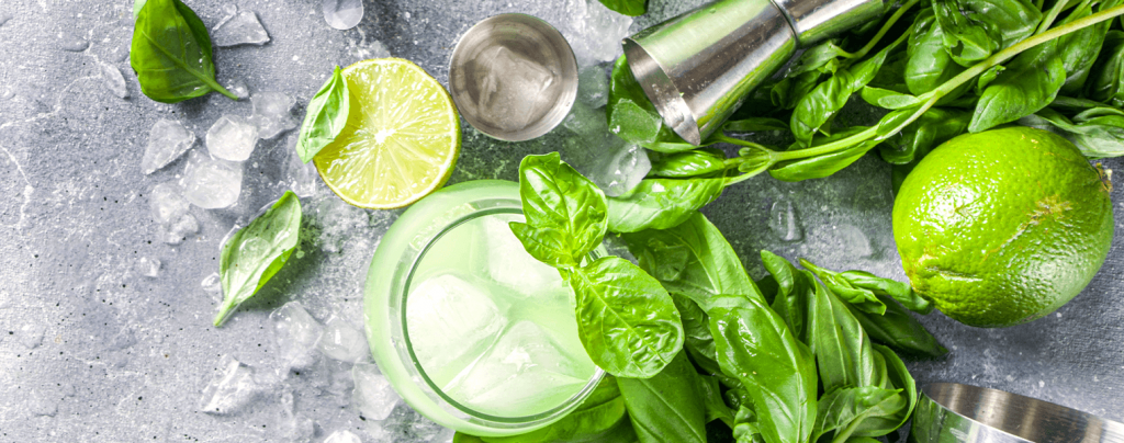 living color garden center how to grow basil plus recipes gin basil lime cocktail